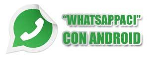 Contattaci con whatsapp con un semplice click! Porchetta Piemonte