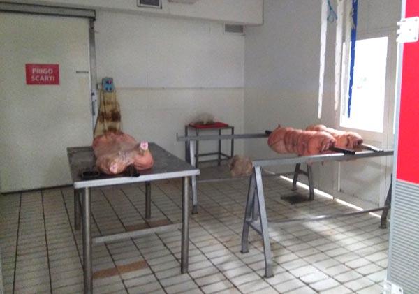 Produzione porchetta di Ariccia Igp